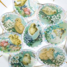 Hey, I found this really awesome Etsy listing at https://www.etsy.com/listing/269442776/edible-easter-chicks-decorated-eggs