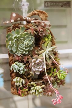 DIY Succulent Wreath Tutorial.  Great tutorial -- very detail intensive and informative about care after planting.  Uses wire frame for planting structure.