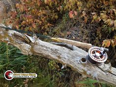 Autumn fly rod in repose. Provo River, UT #flyfishing #solespikes