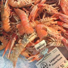 Alive Dublin bay prawns ! #seafood #bretagne #france #food #foodporn #yum #instafood  #Foodlovers #yummy #instagood #photooftheday #Foodies #fresh #tasty #foodie #delish #delicious #eating #foodpic #foodpics #eat #hungry #foodgasm