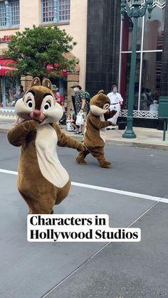 Disney Tourist Blog, Disney Parks, Disney Couples, Disney Love, Hollywood Studios, In Hollywood, Mickey Mouse Costume, Disney World Magic Kingdom, Face Characters