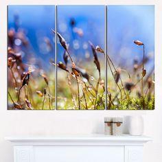 Abstract Summer Spring Moss Flowers - Modern Landscape Wall Art