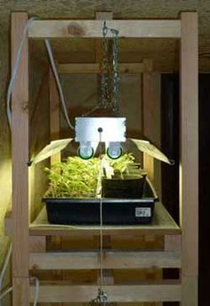 Build your own seed starting grow light stand out of inexpensive 2x2 lumber and shop lights!  Stackable design - build one shelf or several then stack them!