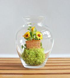 """Happy Birthday"" Sunflower Terrarium by Miss Moss"