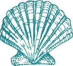 seashell outline - Google Search