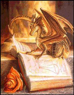 dragon studying
