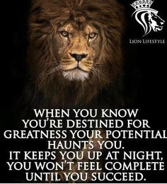 Sometimes it's all I think about Wisdom Quotes, True Quotes, Great Quotes, Motivational Quotes, Inspirational Quotes, Qoutes, Funny Quotes, Lion Quotes, Theme Tattoo