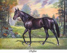 Portrait of Ruffian