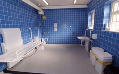 Three leading disabled campaigners have backed a petition that calls on the government to force all new large buildings to include a Changing Places toilet. The petition, launched by Lorna Fillingh…