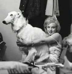 marilyn monroe with big white dog