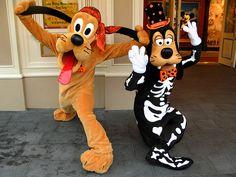 Halloween Pluto & Goofy <3