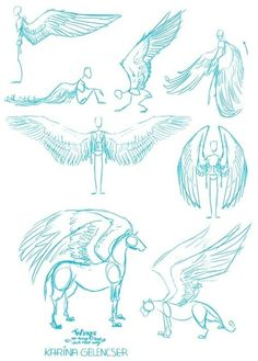 How to draw winged animals Pegasus angel