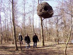 Giant Nest Alfio Bonanno