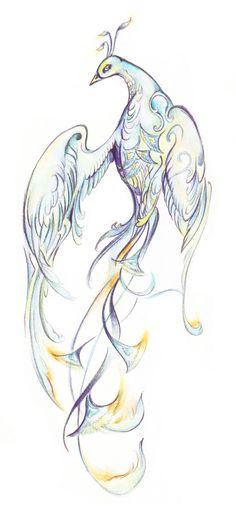bird http://hub.tutsplus.com/tutorials/how-to-draw-an-elegant-fantasy-bird-with-colored-pencils--vector-15416