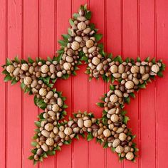 Star shaped Christmas wreaths. If you want to be different with your Christmas wreath you can design them in this shape and fill it with chestnuts inside and framing them with green leaves to complement the chestnuts.