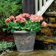 Pick the Perfect Garden Container | Whether you're a container-gardening novice or you'd like to expand your existing collection, our simple guide will help you select a planter. | SouthernLiving.com