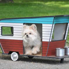 Red, white, and blue - Creative Dog House Designs - Sunset