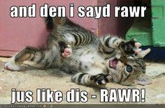 den i sayd rawr