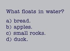 What Floats In Water? T-Shirt | SnorgTees