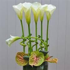Resultado de imagem para corporate flower arrangements london