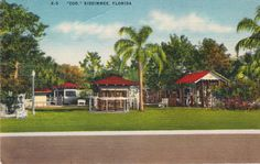 Old Postcard ~ KISSIMMEE ZOO, postmarked Jan. 24, 1955