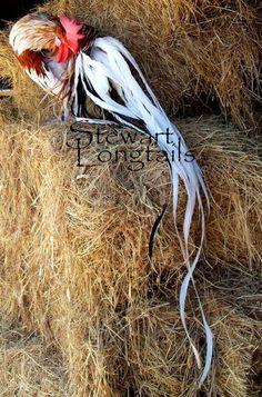 "Onagadori Chickens | yr old splash red phoenix rooster named ""Patriot"""