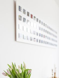 tulpen_mit Bauhausmemorie