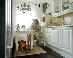 Portraits of Cosplay Enthusiasts in their Homes by Klaus Pichler