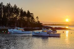 Lobster Boats in Carrying Place Cove,Phippsburg,Maine