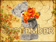 🍁🍂🍁🍂🍁 Tatty Teddy, Blue Nose Friends, Friends In Love, Ted Bear, September Baby, Calendar Pictures, Birthday Club, Teddy Bear Pictures, Birth Flowers