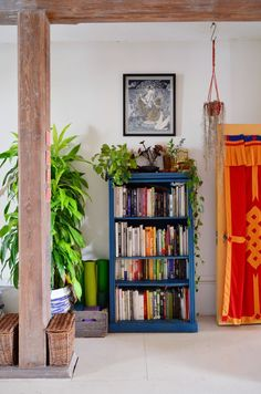 Plants and bookcase