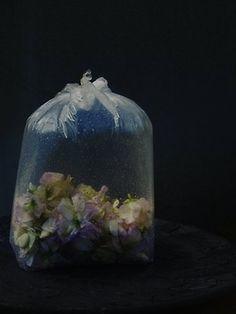 flowers in bag of water