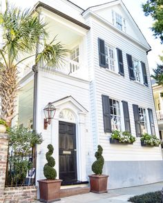 Jew pink pinterest charleston sc doors and curb appeal a portrait of charleston as a young man good morning and happy windowboxwednesday malvernweather Images