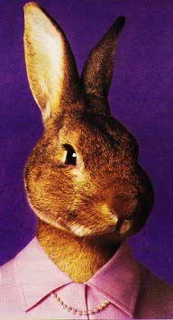 From a ridiculous story on slash dot. A neat rabbit woman. http://www.grendel.org/hunter/db/pics/printbun.jpeg