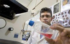 Águas de Pontal: Flora nacional pode ter remédios para cura de víru...