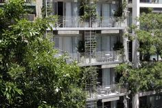Palo Santo Hotel in Palermo, Buenos Aires, Argentina - Lonely Planet