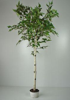 Künstliche Birke 170cm Kunstbaum Dekobaum künstliche Pflanze Birken Baum Deko
