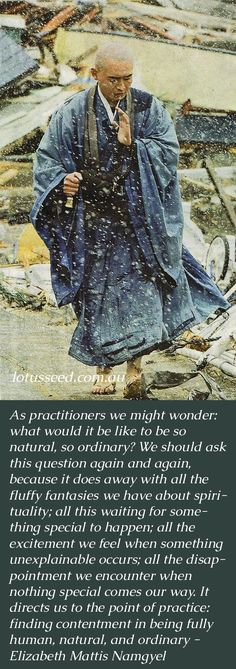 Elizabeth Mattis Namgyel Buddhist Zen quotes by lotusseed.com.au