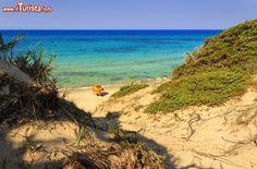 Immagine Spiaggia selvaggia nei pressi di Torre Guaceto in Puglia
