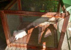 ALC RÚSTICOS : Viveiro de coelho