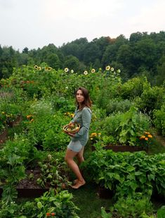 Woman in Garden in the Summer Northern Michigan, Lake Michigan, Nature Words, Harvest Basket, New Journey, The Thing Is, Gardening For Beginners, Weeding, Permaculture