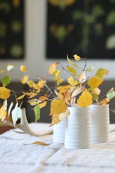 Yellow birch branch on my livingroom