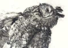 Bill Logan: DETAIL • ROAD KILLED, LONG-EARRED OWL #5. Ink and surface alteration on paper, 2016.