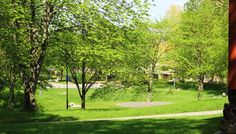 summer park - Google Search