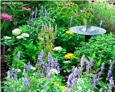 / gardens garden design inspiration http://www.redgage.com/photos/ChantalPhotoPix/a-fairy-tale-forest-with-snowy-evergreen-trees.html