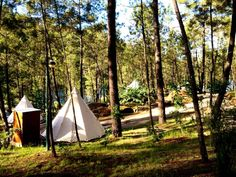 Ínicio - Lima Escape Camping e Glamping Ria Formosa, Escape, Parque Natural, Outdoor Gear, Glamour, Glamping Tents, Places, Travel, The Journey