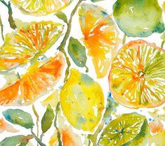 Citrus Garden, Watercolor Fruits, Orange, Lemon, Lime, Fine Art Print 8x10
