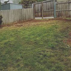 Before and after tidy up. Removal of old veggie garden and rock edging. Lawn area levelled and new treated pine edging installed. . . #jewelllandscaping #hobart #tasmania #landscaping #landscaper #garden #gardens #gardening