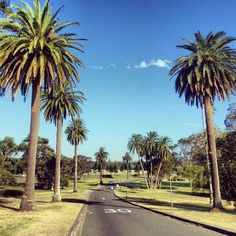 """See 1088 photos and 65 tips from 4796 visitors to Centennial Park. """"Great area for exercising not so far from the city. Centennial Park, Wedding Spot, Sydney, City, Beautiful, Cities"""