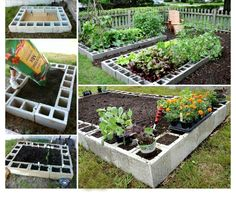 6SuccessfulVegetableGarden.jpg (700×606)